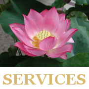 LCCservices