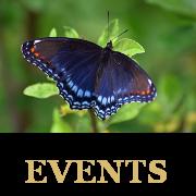 lcc events-THUMB